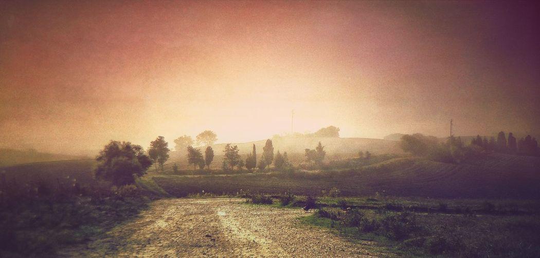 NEM Submissions EyeEm Best Shots - Landscape AMPt_community IPhoneography