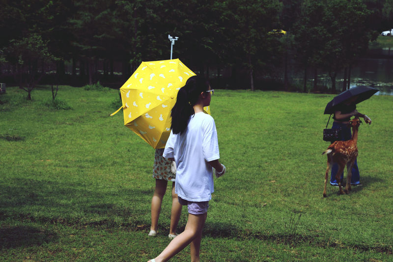 Full length of woman with umbrella standing on rainy day