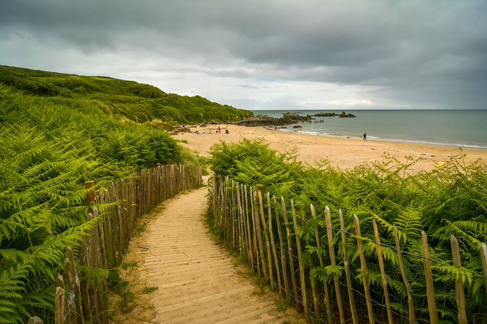 Where memories are made ! Atlantic Ocean Ireland Path Beach Beauty In Nature Cloud - Sky Day Fern Green Color Growth Horizon Over Water Landscape Nature Outdoors Pathway Photography Sand Scenics Sea Sky Tranquil Scene Tranquility Water