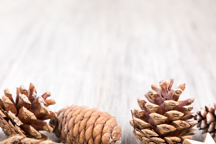 Abundance Brown Close-up Coniferous Tree Day Dry Focus On Foreground Food Food And Drink Freshness Indoors  Large Group Of Objects Nature No People Nut Nut - Food Pattern Pine Cone Pine Tree Still Life Table Temptation Wellbeing