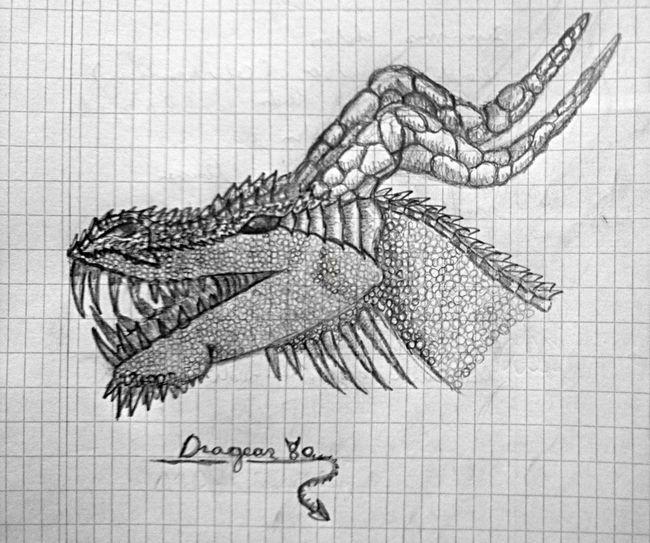 Getting Inspired Drawing Dragon EyeEm Best Shots