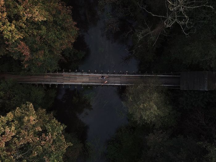 Aerial view of bridge over river in forest