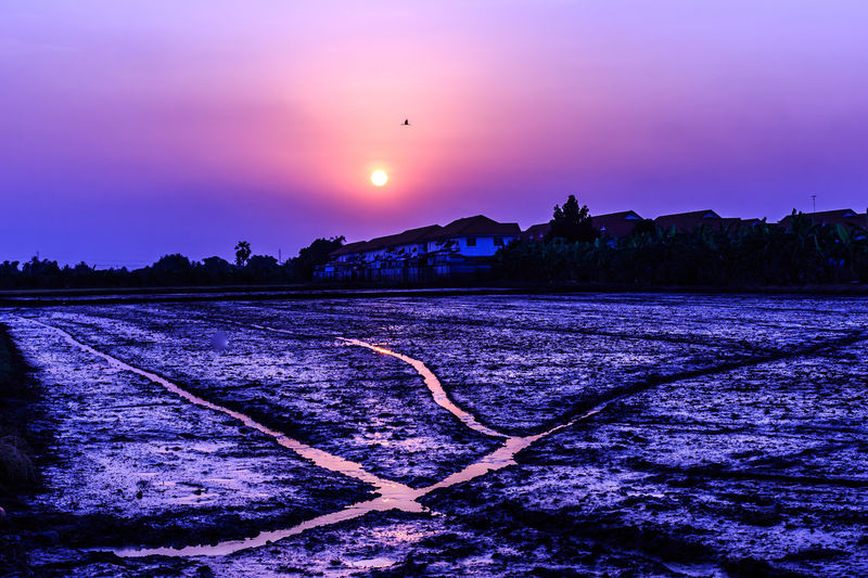 Farm at sunset. Peasant Twilight Farmer Sunset_collection Thailand Agriculturist Beauty In Nature Desolated Place Dusk Nature No People Outdoors Peasantry Ploughman Plowman Scenics Sky Sunset Tranquil Scene Tranquility Water West