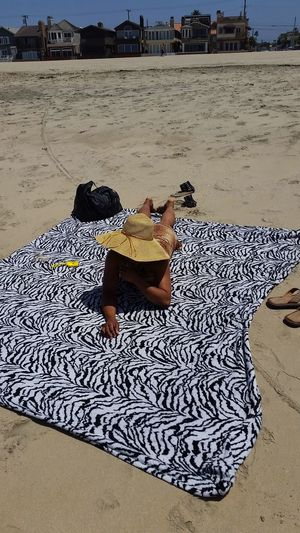 Pets Beach Sand Shadow Leopard