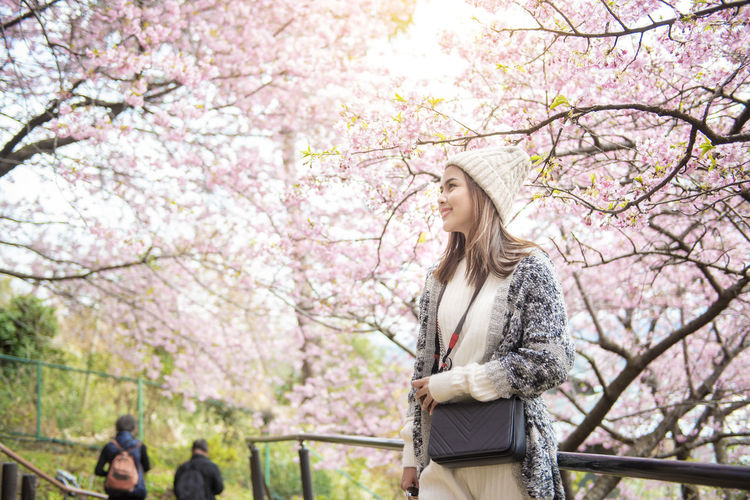 Low angle view of woman and pink cherry blossoms in park
