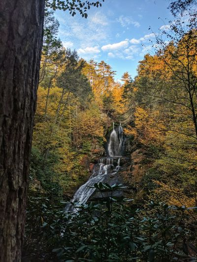 Beauty In Nature Outdoors Day Nature Spraying Water Growth Sky No People Tree Waterfall Delaware Water Gap