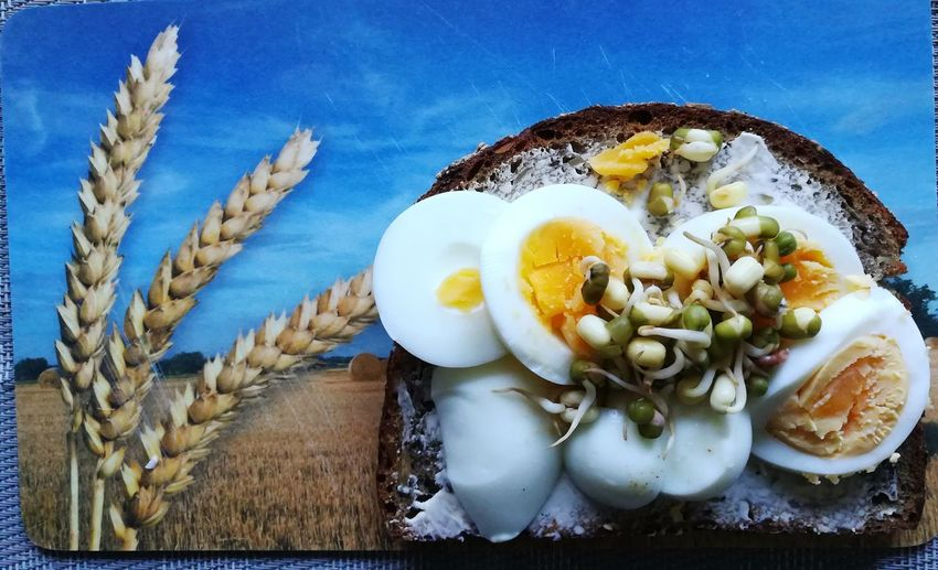 Frühstücksei mit Butterbrot und Mungosprossen Cereals Mungobeans Breakfast Time Egg Bread & Butter Bread Close-up No People Healthy Eating Food And Drink Food Freshness Still Life Wellbeing Ready-to-eat Sky Indoors  Fruit Table Nature Rope Directly Above Focus On Foreground Day Plate