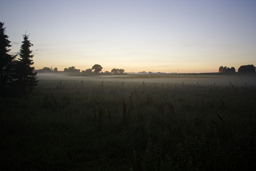 Arising ground mist in the late evening of a warm and rainy Summer Day. Foto (c) 2016 Kay-Christian Heine Blue Dark Field Germany Grass Horizon Over Land Idyllic Landscape Meadow Mist Nature No People Non Urban Scene Non-urban Scene Outdoors Plant Remote Rural Scene Scenics Schleswig-Holstein Sky Sunset Tranquil Scene Tranquility Tree