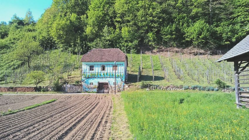 Slovenia House House In Prairie Old Beautiful Traveling Landscape Blue Village Country
