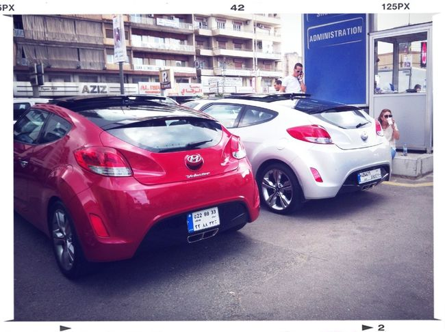 Veloster Cruise