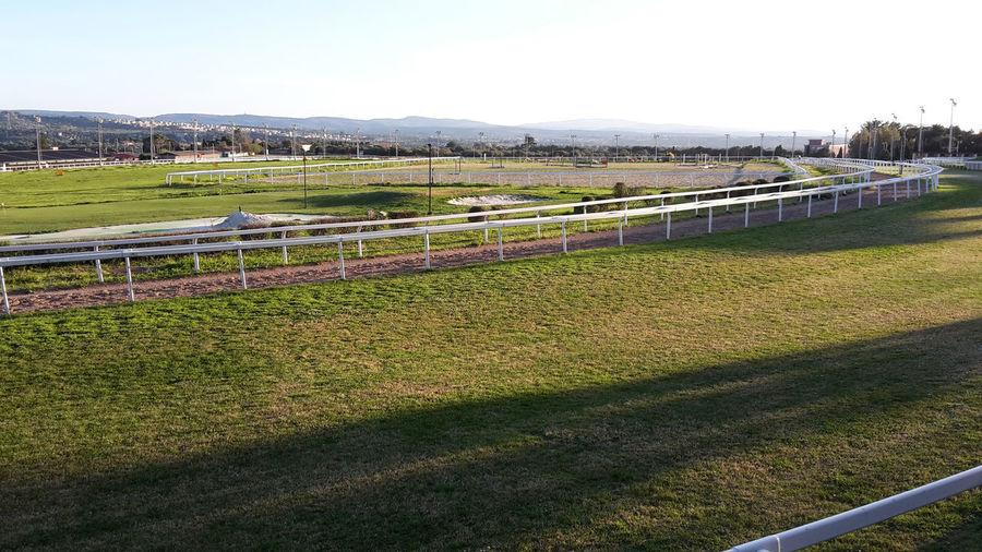 Ippodromo Grass