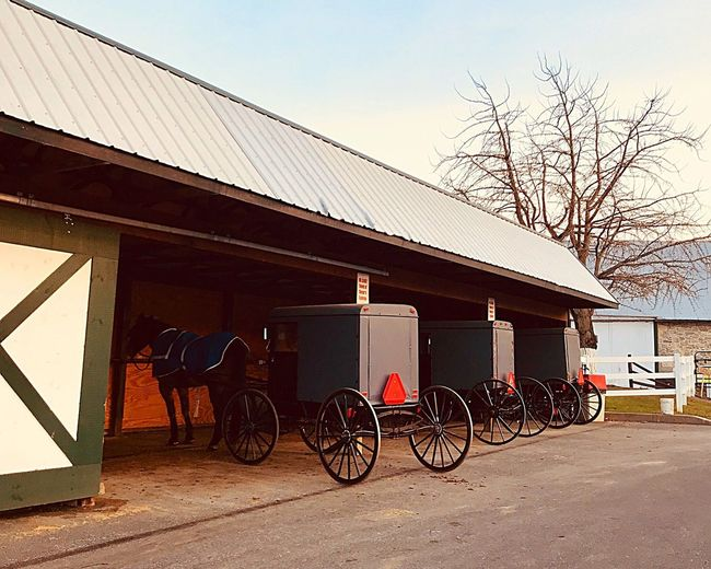 AMISH BUGGY Amish Horse Carriage Buggy Transportation Architecture Built Structure Building Exterior Mode Of Transportation Land Vehicle Outdoors Cart Road No People