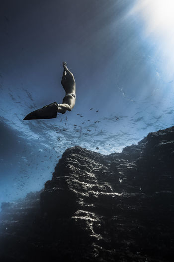 Low angle view of silhouette person in sea against sky