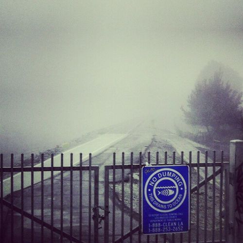 Daum! This fog is taking over the whole world!!! @soilentgreen22 where are you? Haha Scarymonsters Fog Freakingsal