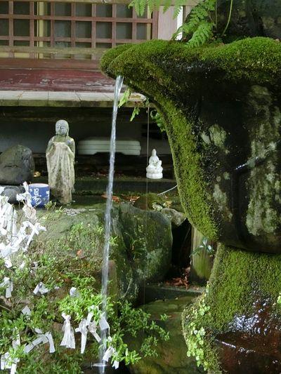 禅 Zen Buddha Japanese Temple Water Moss