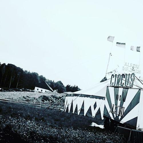 Circus of