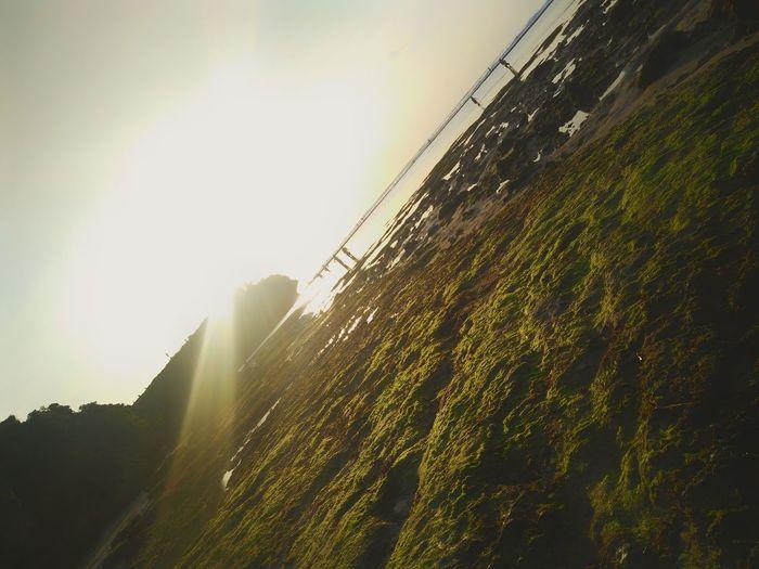 Sunset Lens