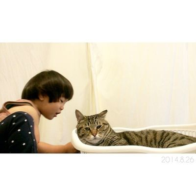 作戦会議中◎ * どんなイタズラ考えたのかな? 1歳10ヶ月 息子 男の子 22ヶ月 子供ig_boysig_kidsig_oyabakabu親バカ親ばか部2歳猫ネコにゃんこぬこig_catsnekostagramcatstagramminu_the_cat3just_cute_catsanimals_cutskinta_kanta