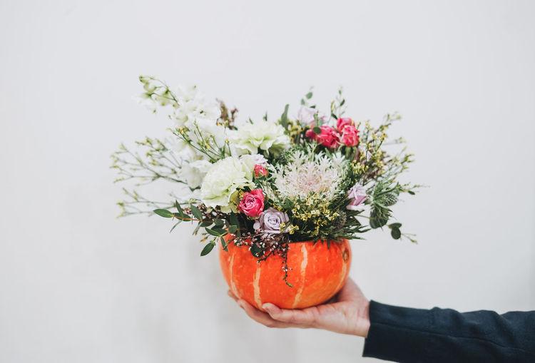 Diy autumn flower arrangement bouquet in pumpkin on whiye background, florist at work