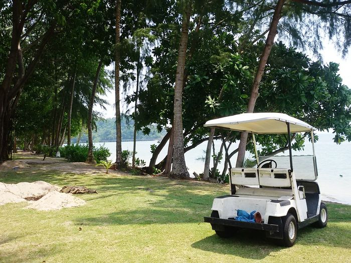 Golf Cart Parked By Trees On Field
