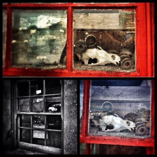 As the old song says...how much is that doggy in the window? Abandoned Shootermag Filthyfeeds 3 Of One