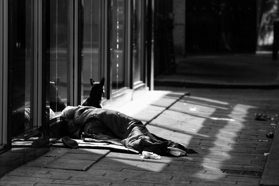 Light And Reflection Social Issues Lying Down Dog Sleeping One Person Real People Men Mammal Austerity Sleeping Rough Streetphotography Streetphoto_bw Street Scotland Glasgow
