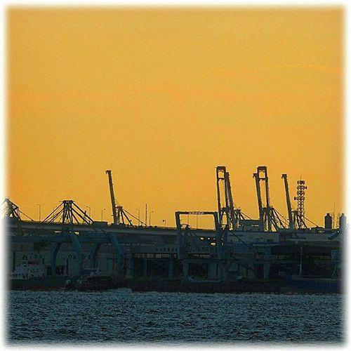 🌇 キリンさんの夕焼け🎶☺ gantry crane sunset🎶☺ ※ ※ きりん Giraffe ガントリークレーン Gantrycrane 名古屋港 Port_of_Nagoya 日本 Japan Aichi Nagoya 夕焼け Sunset 夕暮れ Dusk 夕陽 Settingsun 自然 Nature 安らぎ Peace 眩しい Dazzling Orange Vista 😚 Sunset_Japan_nagoya_mitu