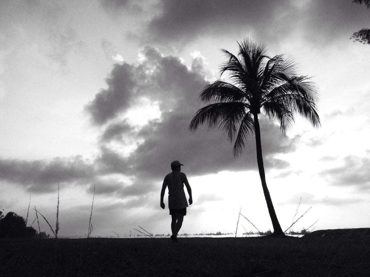 Man Walking On Beach