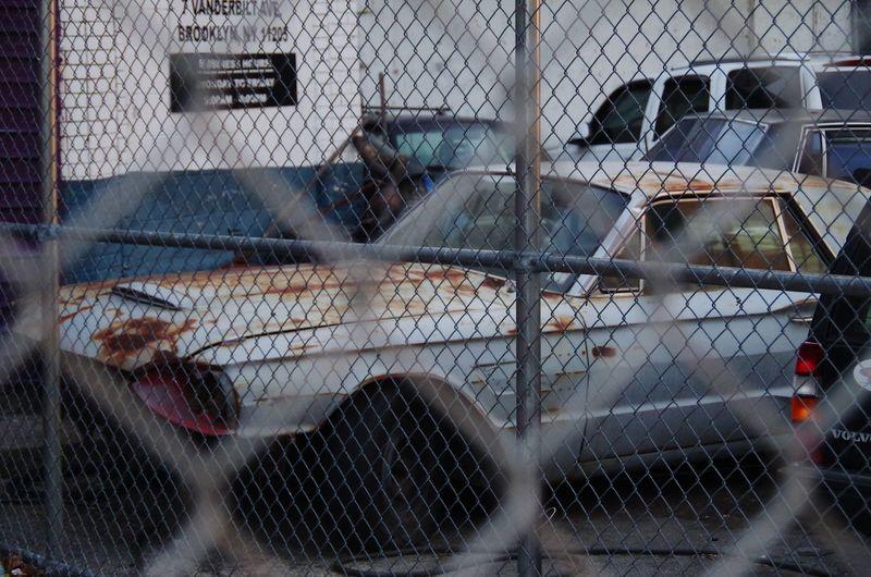 Birdy Thunderbird Oldtimer Musclecar Ponycar Fence Rusty Rustycar Wreck Carwreck Babyblue Backyard Car Oldcar Cars Backyard View