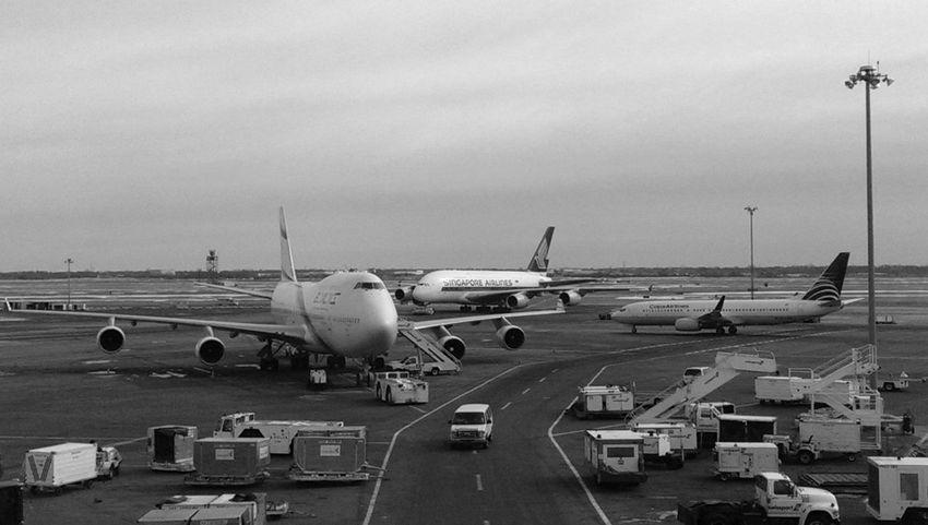 JFK Airport Layover Delta Airlines Flight
