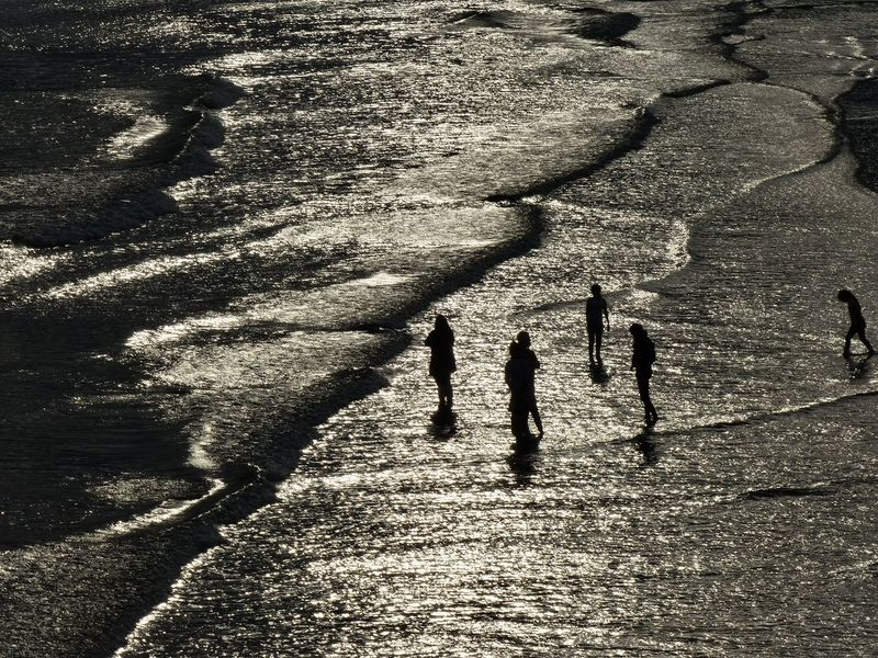 As the tide goes out, bathers enjoy the late afterboon sunshine on Brighton Beach - August 2015. August Bathers Brighton Brighton Beach East Sussex England English Channel Sea Silhouette Water Waves