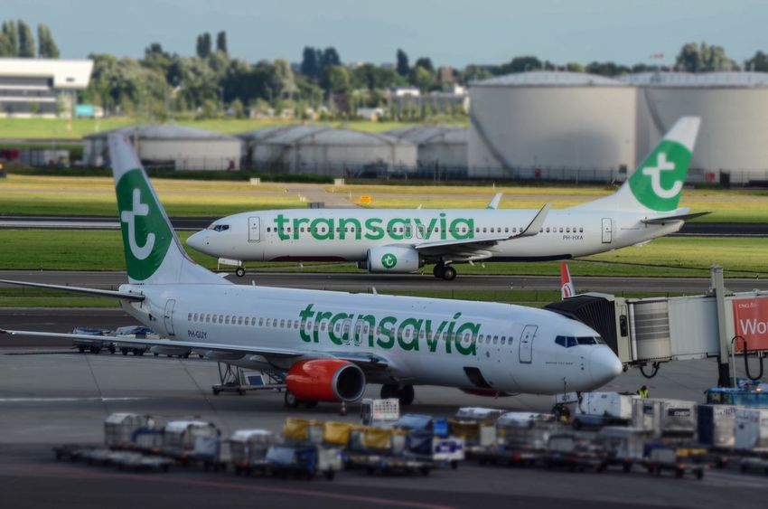 TRANSAVIA's B737 in action at Schiphol airport Transportation Travel Transavia Spottaaja Schipolairport Schiphol Aviation Aviationgeek Boeing 737 Boeing Nikon Nikonphotography Plane Amsterdam