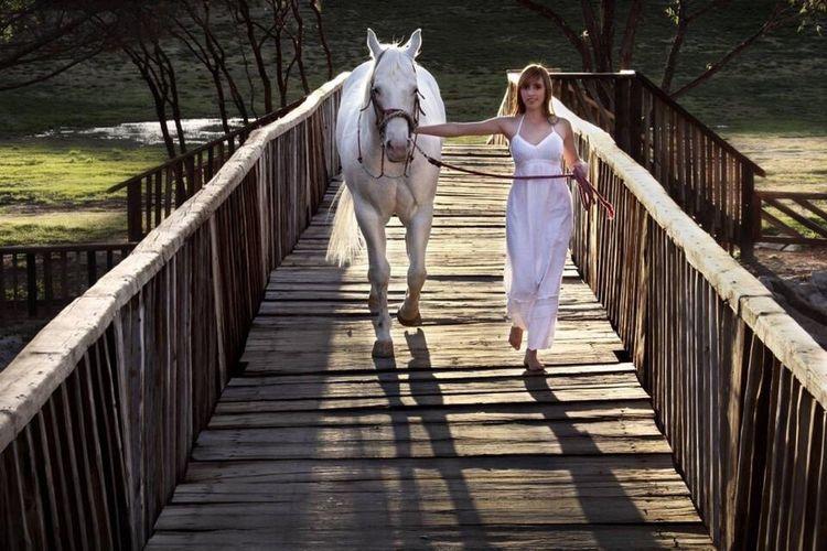 Canonphotography Canon_photos Canon_official Horse Horse Photography  Piesdescalzos Photography