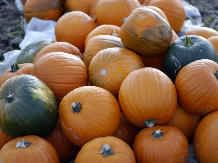 Abundance Backgrounds Close-up Day Food Food And Drink For Sale Freshness Halloween Healthy Eating Market Nature No People Orange Color Outdoors Pumpkin Raw Food Retail  Squash - Vegetable Vegetable