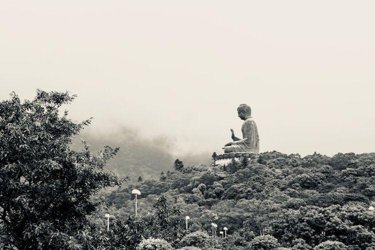 Tian Tan Buddha - Profile View Travel Buddha Blackandwhite Temple Buddhism HongKong Travel Destinations Sky Plant Real People Nature Land Tree Day Clear Sky Outdoors Sitting