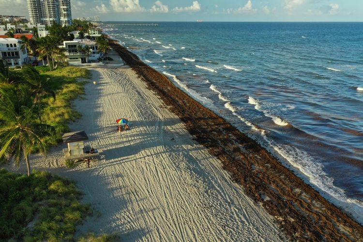 Hollywood Beach Aerial Shot Dji Mavic 2 Pro Architecture Beach Beauty In Nature Building Exterior Built Structure City Day Florida High Angle View Horizon Horizon Over Water Incidental People Land Nature Outdoors Plant Sea Travel Travel Destinations Tree Water