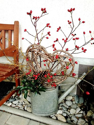 Weihnachtszeit 2017 No People Day Outdoors Architecture Building Exterior Flower Close-up