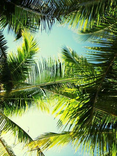 #summer #tropical #Boracay