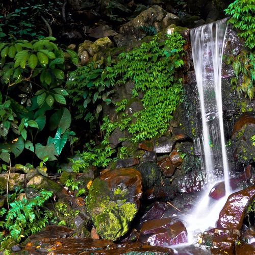 Small Waterfall at Crocker Range National Park. ?? Nature Waterfall Green
