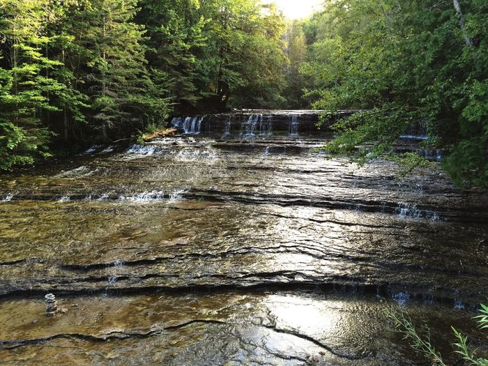 Beautiful waterfall in Wisconsin! Tree Nature No People Waterfall Outdoors Forest Water Beauty In Nature Day River First Eyeem Photo