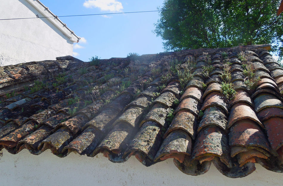 Abundance Architecture Blue Built Structure CastillaLaMancha Close-up Low Angle View Repetition Roof Roof Tile Side By Side SPAIN Sunny Tiles Tilt Travel Photography Walking Around