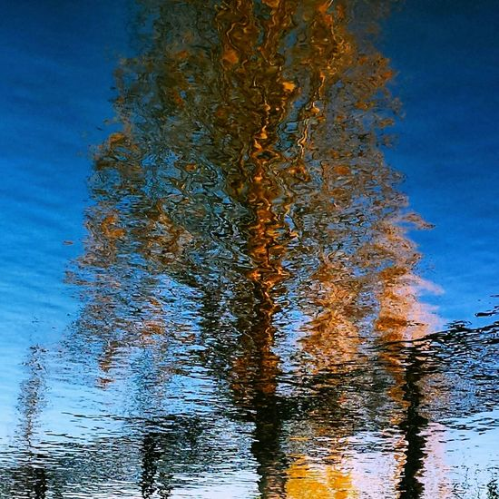 Otoño Nature_collection Reflection Reflection_collection Nature Colors Nature EyeEmBestPics Streetphoto_color Naturelovers Eyem Gallery Streetphotography