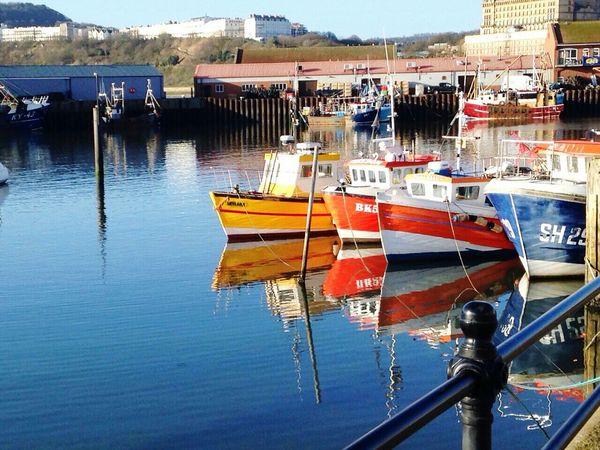 Stunning, hometown, harbour, spring Enjoying Life