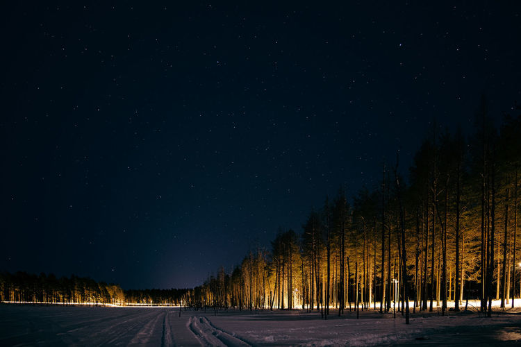 Road amidst trees against sky at night during winter