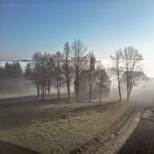 Mgła Poranek <3 Szary Poranek Kościół