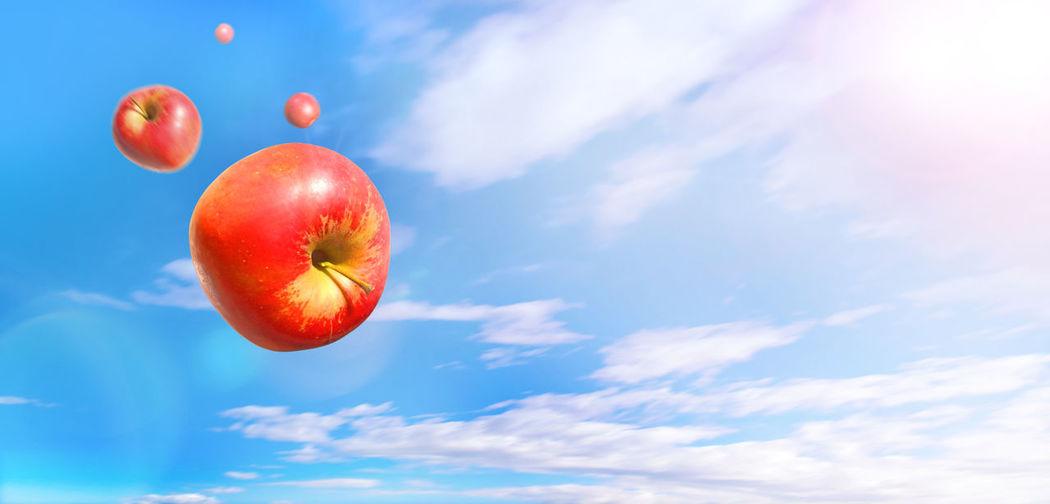 Apple Blue Day
