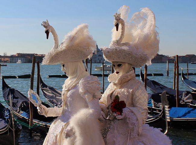 Carnevale Di Venezia Cigni Cultures Day Gondola - Traditional Boat Maschere Veneziane Nautical Vessel Outdoors People Sky Travel Destinations Venice, Italy