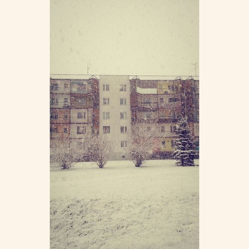 Finally Snow Christmastime ❄