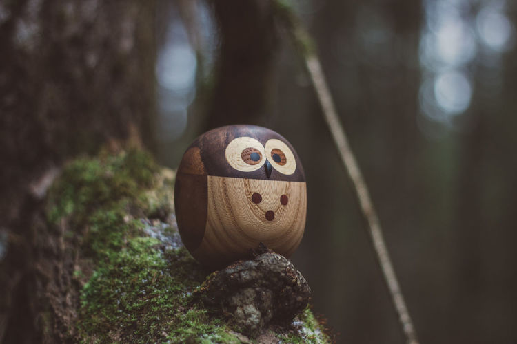 Forest Wood Wooden Wood - Material Toy Toys Wooden Toys Moss Tree Owl Plant Focus On Foreground Representation Face Creativity Art And Craft Anthropomorphic Face No People Day Nature Anthropomorphic Close-up Trunk Human Representation Tree Trunk Craft Outdoors Anthropomorphic Smiley Face