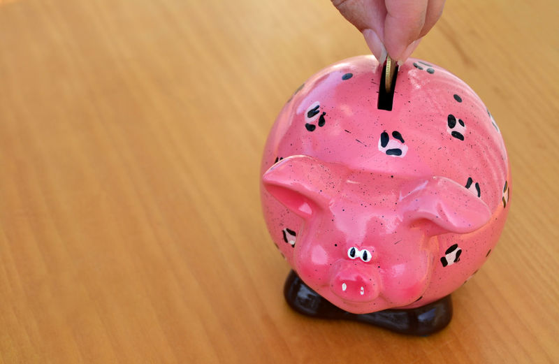 Woman puts cash money into a pink piggy bank Bank Business Cash Close-up Coin Concept Credit Dollar Economy Euro Finance Financial Hand Income Money Moneybox Object Piggy Piggy Bank Piggybank Pink Color Saving Selective Focus Still Life Woman